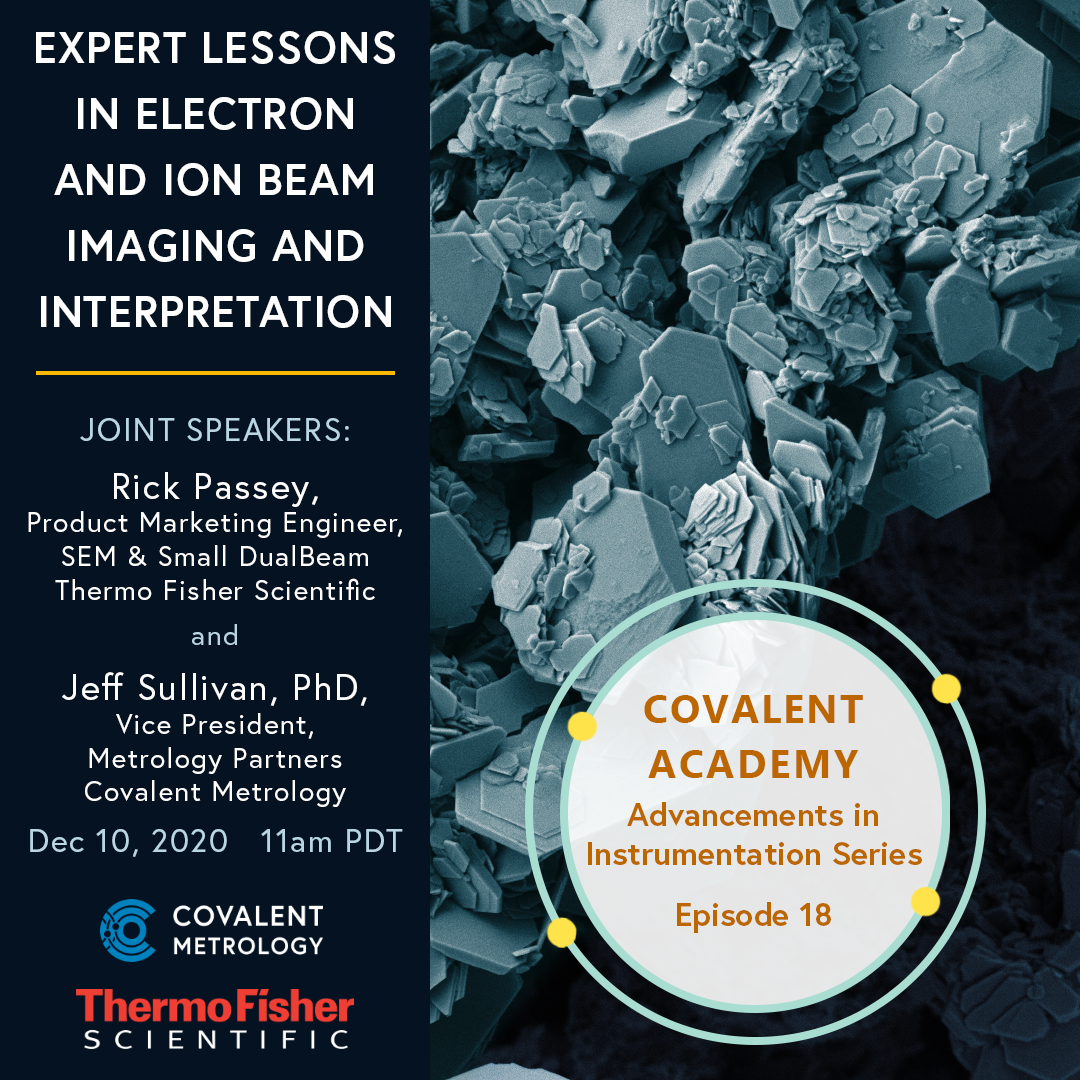 Expert Lessons in Electron and Ion Beam Imaging and Interpretation
