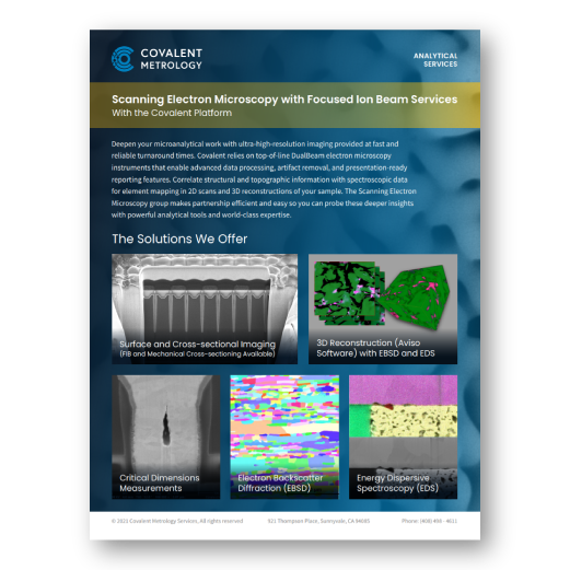 Scanning Electron Microscopy with Focused Ion Beam Services